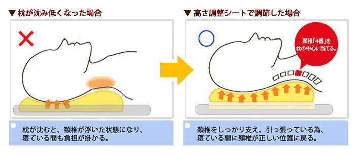 めりーさんの高反発枕 頸椎(首の骨)を支える設計2