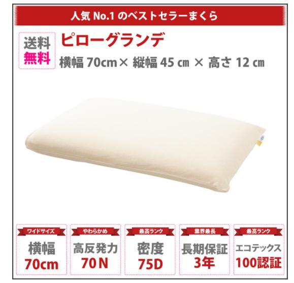 ピローグランデという高反発枕